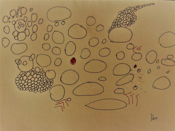 アート作品 Yan作「混沌」